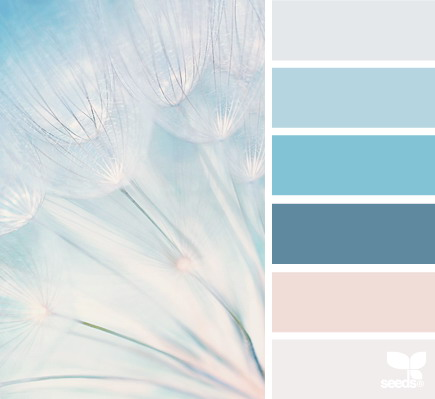 seeds color 18 世界上最优雅的配色