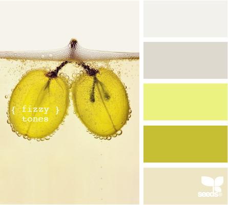 seeds color 4 世界上最优雅的配色