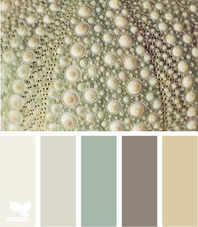 seeds color 6 世界上最优雅的配色