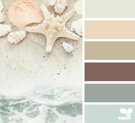 seeds color 16 世界上最优雅的配色