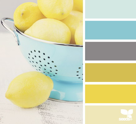 seeds color 17 世界上最优雅的配色